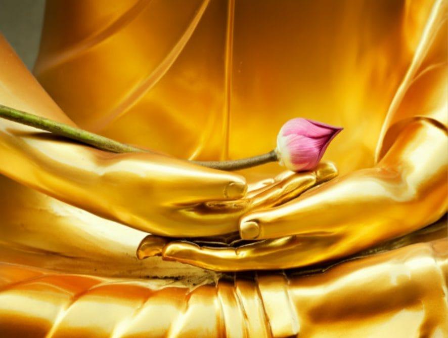 Meditacion Shamata Vipassana Arya Tara Lleida