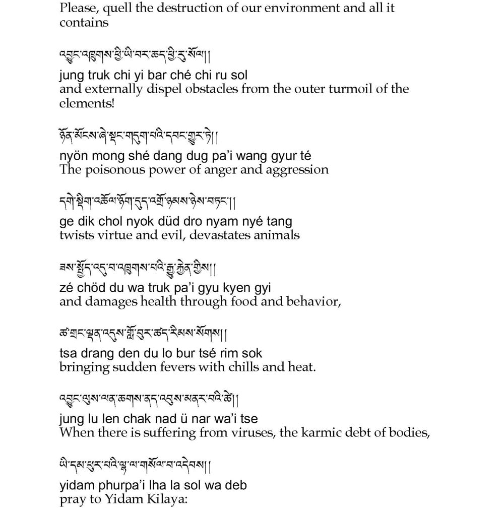 HH Dudjom Rinpoche Prayer to Quell Pandemics