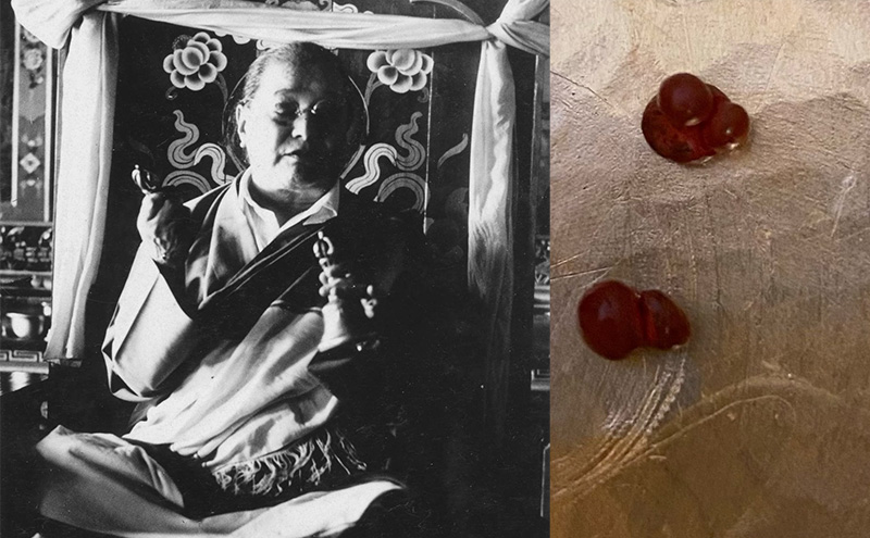 Self arising New Long Life pills blessed by Kyabje Dudjom Rinpoche Jigdrel Yeshe Dorje